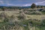 0 Springs Road - Photo 4