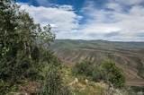 3990 Bellyache Ridge - Photo 10