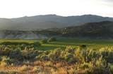 1043 Haystacker Drive - Photo 1