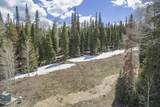 700 Granite Springs Trail - Photo 13
