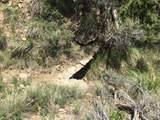 1 Elk Ridge Road - Photo 7