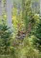 123 Pine Marten Way - Photo 27