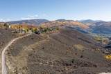 2967 June Creek Trail - Photo 3