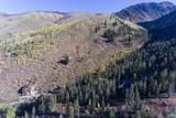 4387 Columbine Drive - Photo 8