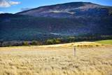 99 Tallgrass - Photo 5