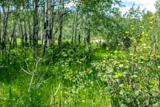 691 Aspen Bluff Lane - Photo 5