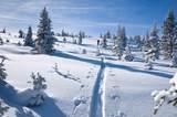 3483 Daybreak Ridge - Photo 62