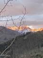 2338 Garmisch Drive - Photo 24