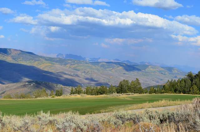 410 Pine Marten Way, Edwards, CO 81632 (MLS #1000527) :: RE/MAX Elevate Vail Valley