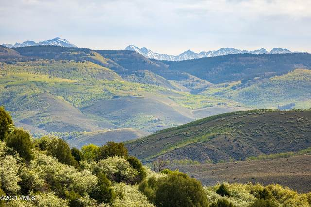 1195 Pilgrim Drive, Edwards, CO 81632 (MLS #1003078) :: RE/MAX Elevate Vail Valley