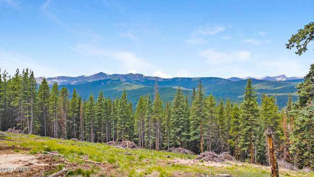 80 Taylor Hill Road, Red Cliff, CO 81649 (MLS #1003397) :: RE/MAX Elevate Vail Valley