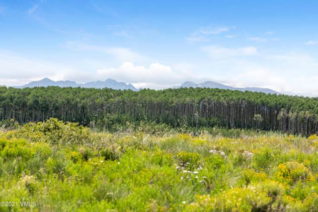 1142 Summit Trail, Edwards, CO 81632 (MLS #1003408) :: RE/MAX Elevate Vail Valley