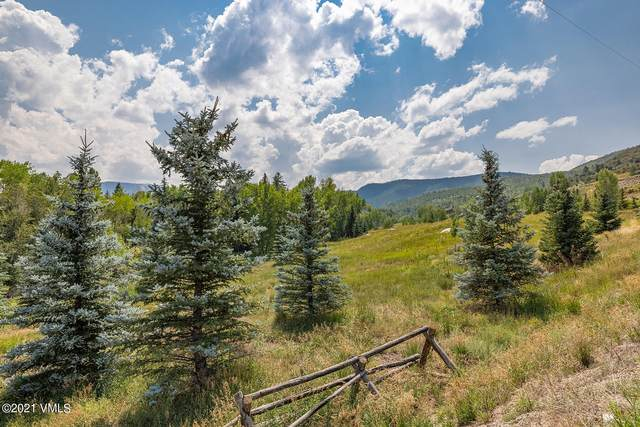 142 & 226 Polar Star Road, Edwards, CO 81632 (MLS #1003792) :: RE/MAX Elevate Vail Valley