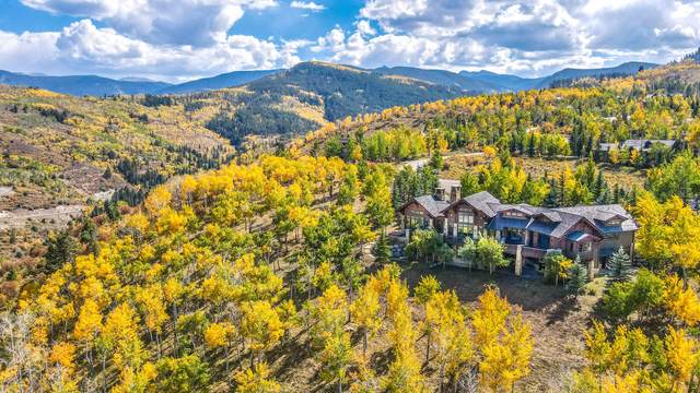 292 Aspen Meadows Road, Edwards, CO 81632 (MLS #1003948) :: RE/MAX Elevate Vail Valley