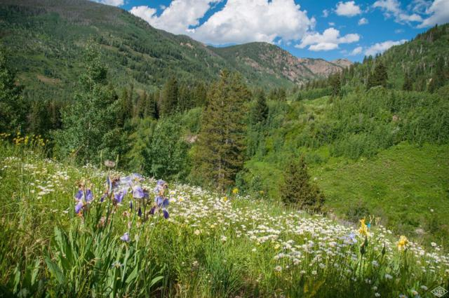 5184 Main Gore Drive S, Vail, CO 81657 (MLS #925981) :: Resort Real Estate Experts