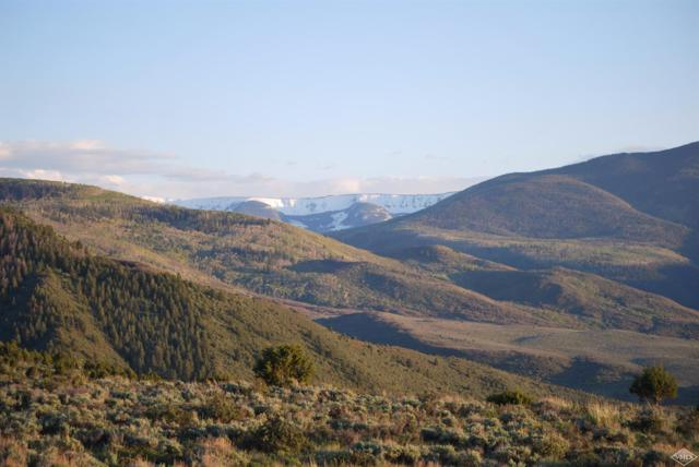 3566 Territory Trail, Edwards, CO 81632 (MLS #927307) :: Resort Real Estate Experts
