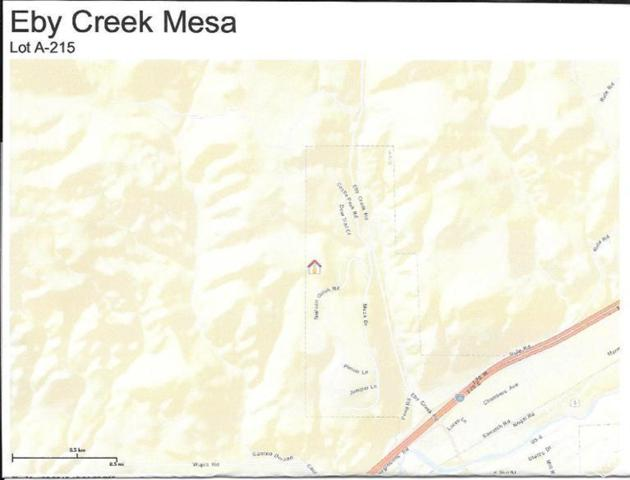 1600 Mesa Drive, Eagle, CO 81631 (MLS #927701) :: Resort Real Estate Experts