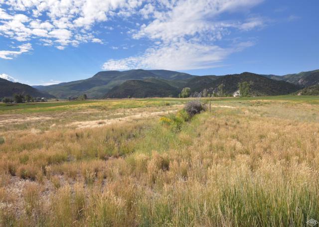 99 Tallgrass, Gypsum, CO 81637 (MLS #930311) :: Resort Real Estate Experts