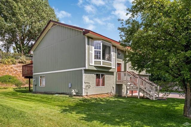 307 Higgins Hollow, Gypsum, CO 81637 (MLS #930478) :: Resort Real Estate Experts