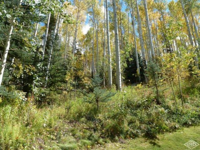 2076 Meadow Brook Drive, Vail, CO 81657 (MLS #932421) :: Resort Real Estate Experts