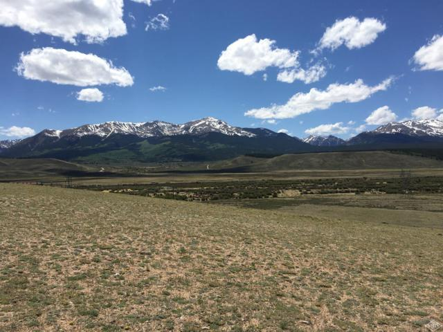 295 County Road 55, Leadville, CO 80461 (MLS #932451) :: Resort Real Estate Experts