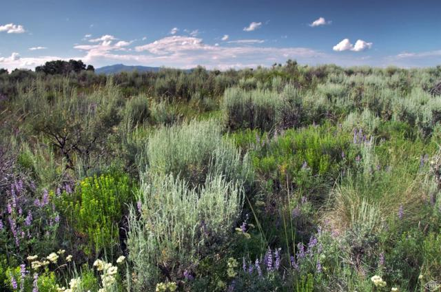 1190 The Summit Trail, Edwards, CO 81632 (MLS #932465) :: Resort Real Estate Experts
