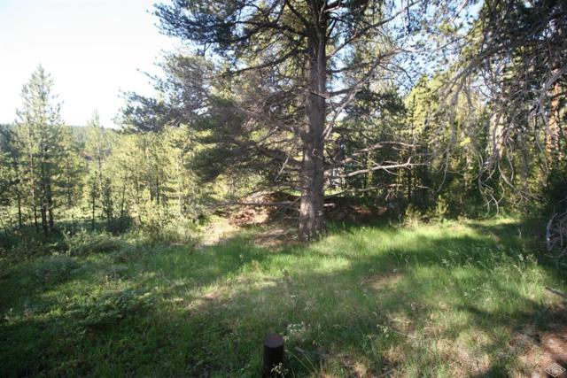 137 Meadows Drive, Leadville, CO 80461 (MLS #932915) :: Resort Real Estate Experts