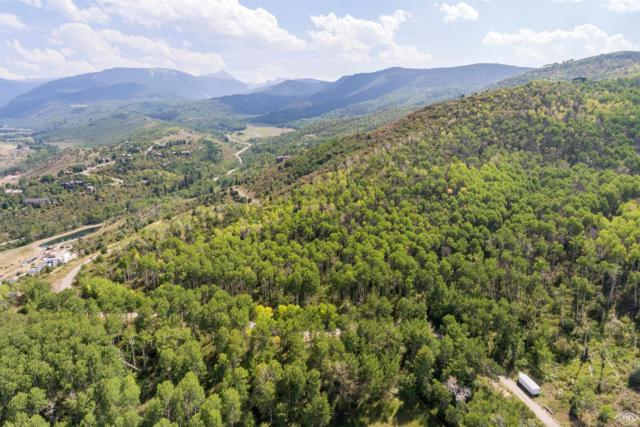 765 Saddle Horn Way, Edwards, CO 81632 (MLS #933476) :: Resort Real Estate Experts