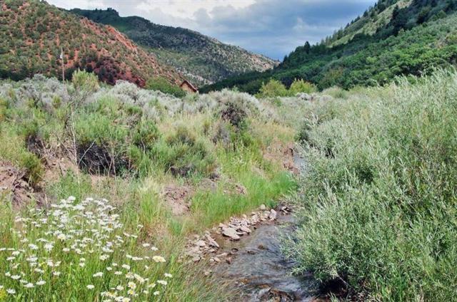 2210 Salt Creek Road, Eagle, CO 81631 (MLS #933500) :: Resort Real Estate Experts