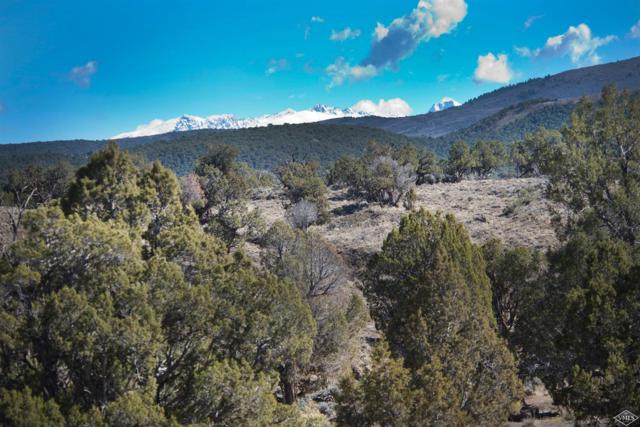 346 Chaparral Ranch Road, Gypsum, CO 81637 (MLS #933651) :: Resort Real Estate Experts