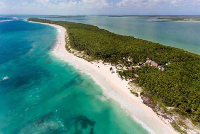 34 Carretera Tulum - Punta Allen, Other, CO 77760 (MLS #933810) :: Resort Real Estate Experts