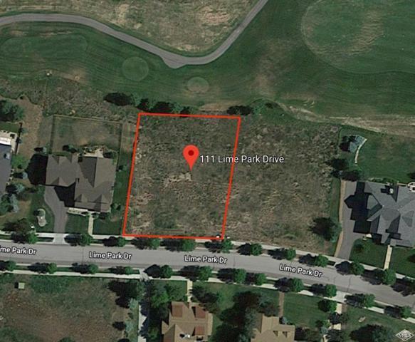 111 Lime Park Drive, Eagle, CO 81631 (MLS #934774) :: Resort Real Estate Experts