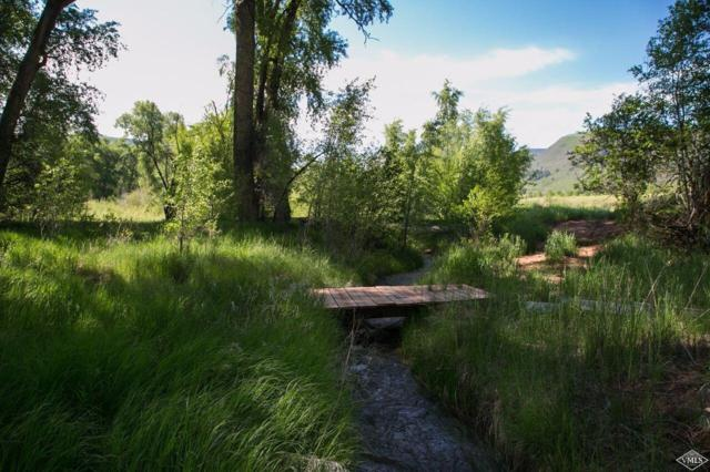 300 Red Bluffs Way, Eagle, CO 81631 (MLS #935031) :: Resort Real Estate Experts