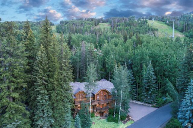 454 Beaver Dam Road, Vail, CO 81657 (MLS #928162) :: Resort Real Estate Experts