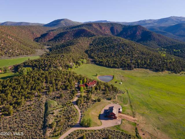 1537 Eby Creek Road, Eagle, CO 81631 (MLS #1003018) :: RE/MAX Elevate Vail Valley