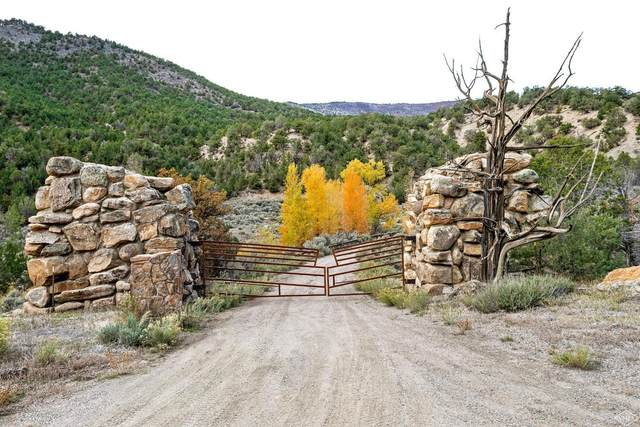 2742-0 Sweetwater Road, Gypsum, CO 81637 (MLS #933763) :: RE/MAX Elevate Vail Valley