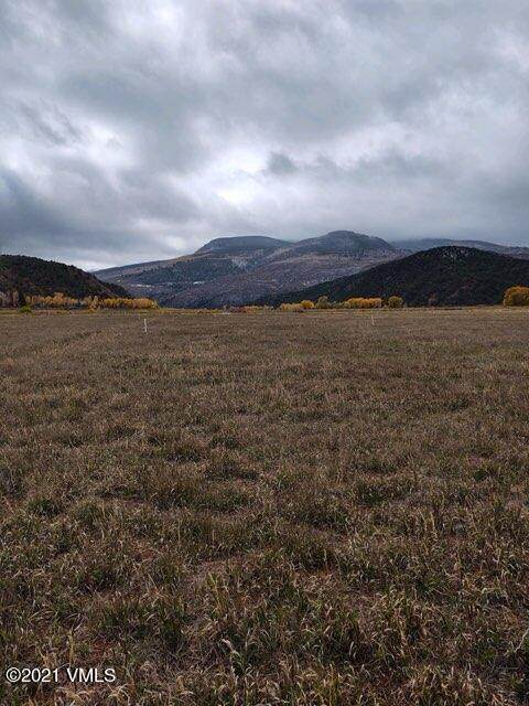 171 Doll Station, Gypsum, CO 81637 (MLS #1003967) :: RE/MAX Elevate Vail Valley