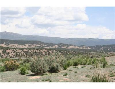260 Cooley Mesa Road, Gypsum, CO 81637 (MLS #928285) :: Resort Real Estate Experts
