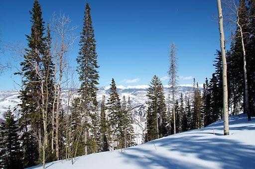603 Granite Springs, Edwards, CO 81632 (MLS #930431) :: Resort Real Estate Experts