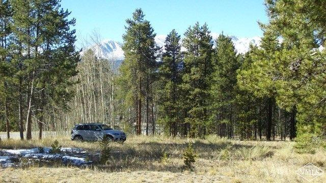 609 Mountain View Drive, Leadville, CO 80461 (MLS #930884) :: Resort Real Estate Experts