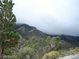 4075 Mont Blanc Way - Photo 48