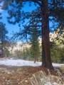 4793 Knotty Pine Way - Photo 25