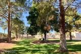 1900 Torrey Pines Drive - Photo 29