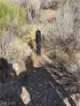 Trout Canyon Road - Photo 11