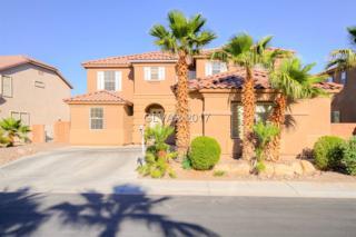 6924 Snow Finch, North Las Vegas, NV 89084 (MLS #1899913) :: Signature Real Estate Group