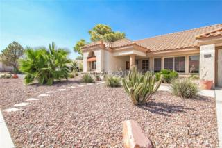 8604 Lynhurst, Las Vegas, NV 89134 (MLS #1900057) :: Signature Real Estate Group