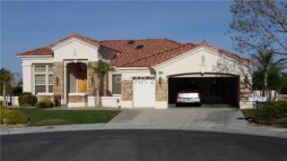 10601 Sky Meadows, Las Vegas, NV 89134 (MLS #1900488) :: Signature Real Estate Group