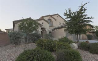 3508 Frigatebird, North Las Vegas, NV 89084 (MLS #1899056) :: Signature Real Estate Group