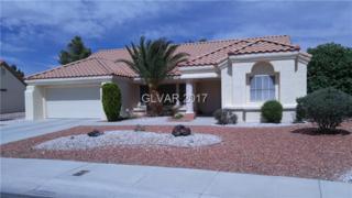 3020 Sungold, Las Vegas, NV 89134 (MLS #1899881) :: Signature Real Estate Group