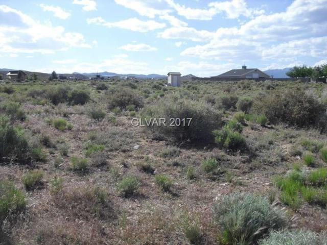 Long Acres, Caliente, NV 89008 (MLS #1901023) :: Trish Nash Team